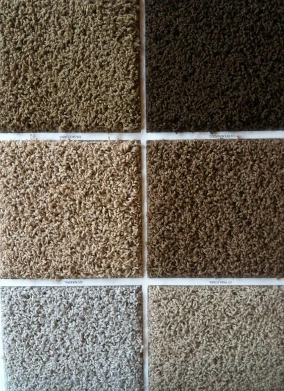 Over 65 Carpets In Portland Inventory Portland Flooring Blog